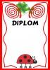 DIPLOM 1
